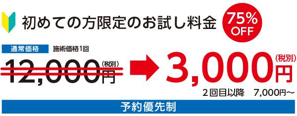 初回お試し料金75%OFF3000円